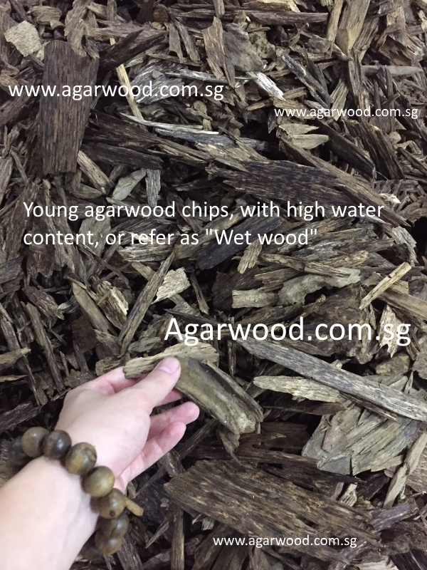 new agarwood chips,incense grade chips